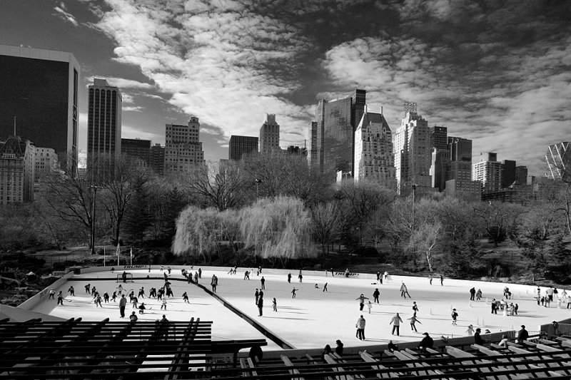 Ice Rink at Central Park