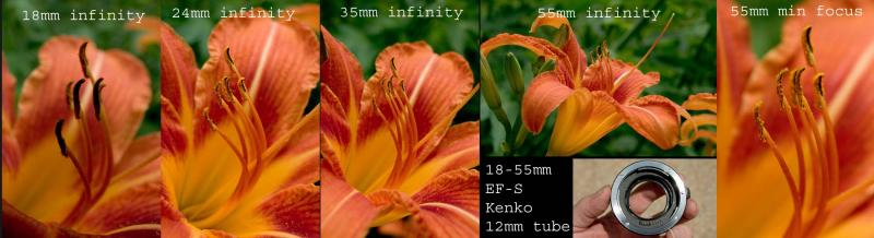 18-55mm f/3.5-5.6 EF-S with Kenko 12mm  tube