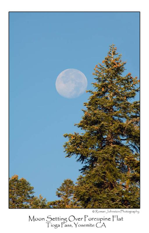 Moon Setting Over Porcupine Flat.jpg   (Up To 30 x 45)