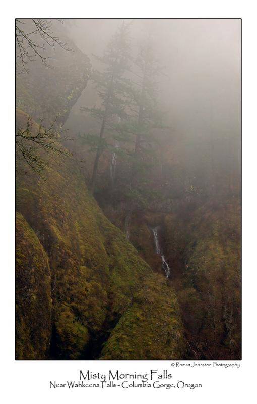 Misty Morning Falls.jpg (NFS)