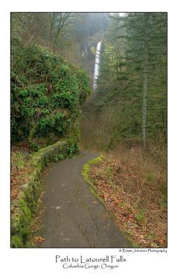 Path to Latourell Falls.jpg
