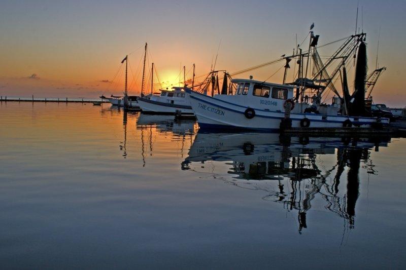 Shrimpers at Sunrise:  Fulton Marina