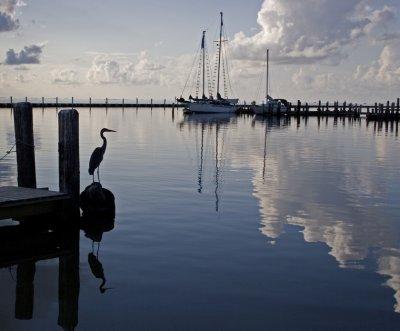 Herons View:  Fulton Marina_Rockport