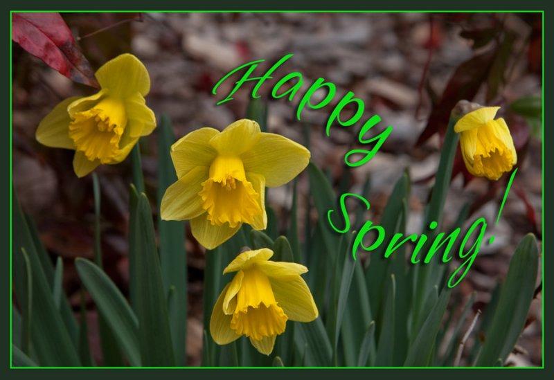 _MG_1514 Happy Spring