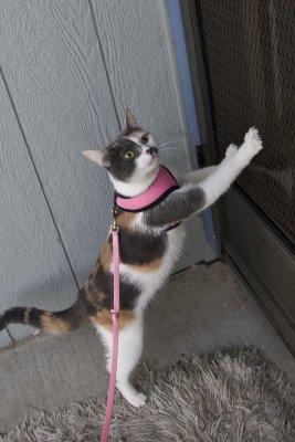 I'm ready to go back inside now!