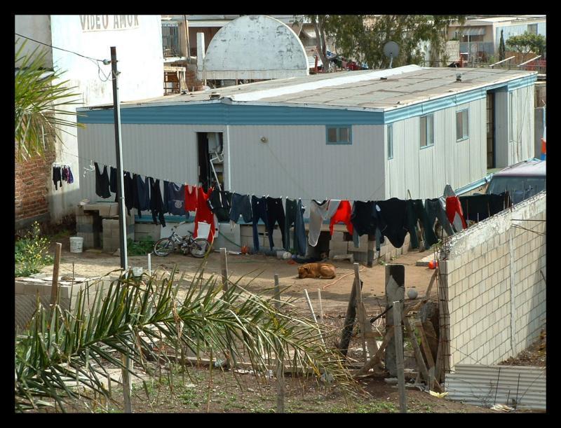 Neighbors laundry on Sunday.