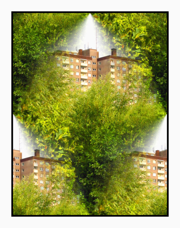Play with buildings and trees