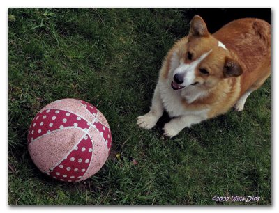 QUINCY, HOARDING THE BALL