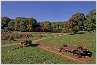Long Street Farm