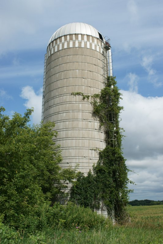 Silo Pointed up 2557.jpg