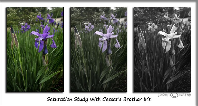 Saturation Study<br>May 6