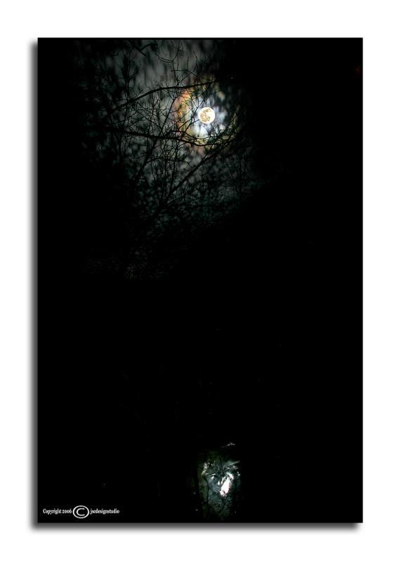 Lunar Light
