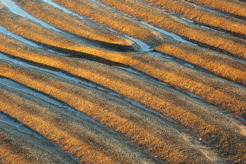 More Ripples in Sand