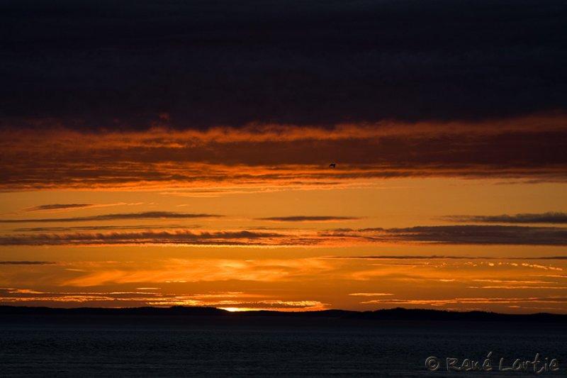 Coucher de soleil / Sunset <br>The Whistle - Long Eddy Point