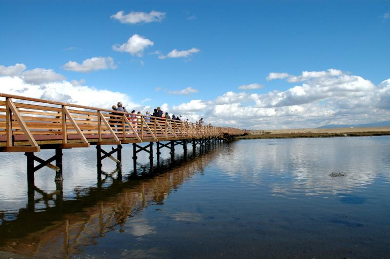 Bolsa Chica Wetlands/Wonder Place for Birds