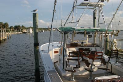 Florida 0111.jpg