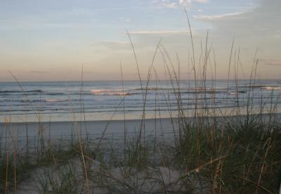 Florida 016.jpg