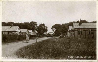 Nuts Avenue, Leysdown
