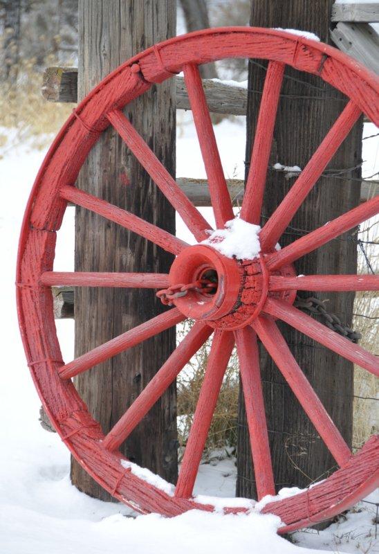 Wagon Wheel with Snow at Firkins Ranch _DSC6370.jpg