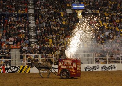 donkey cart _DSC0733.jpg