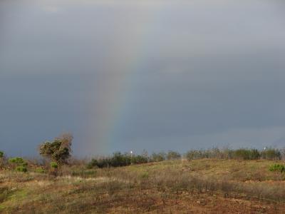Countryside Rainbow - Azinhal > Castro Marim > Algarve