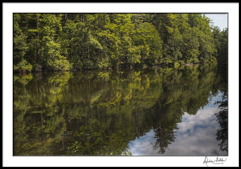 Sandburg Home Lake