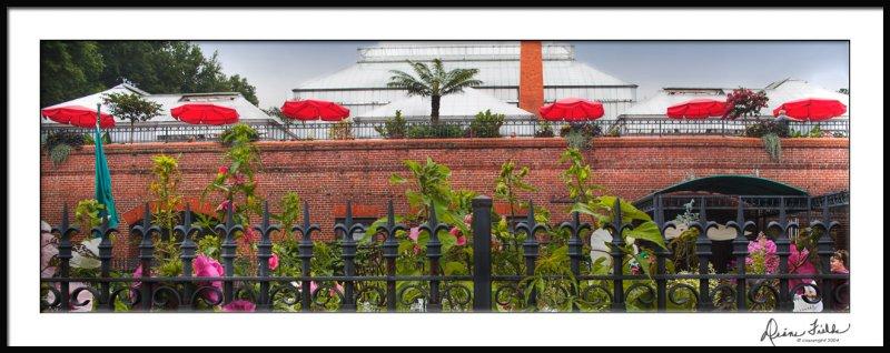 Red Umbrella Panorama