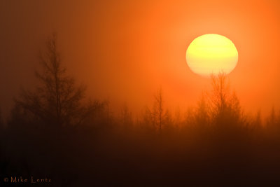 Sunrise in the Sax Zim Bog