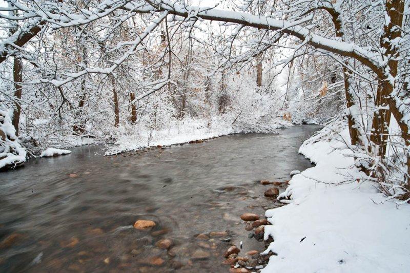 Snow 6276