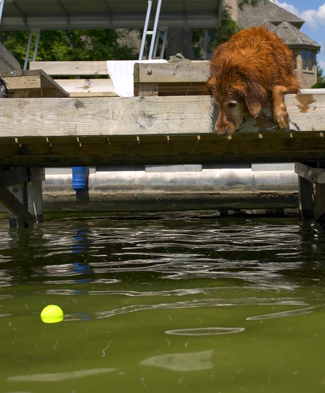 mollie ball in the lake