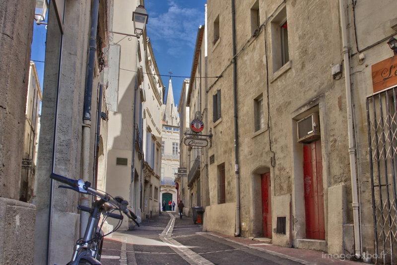 MontpellierEcusson022.jpg