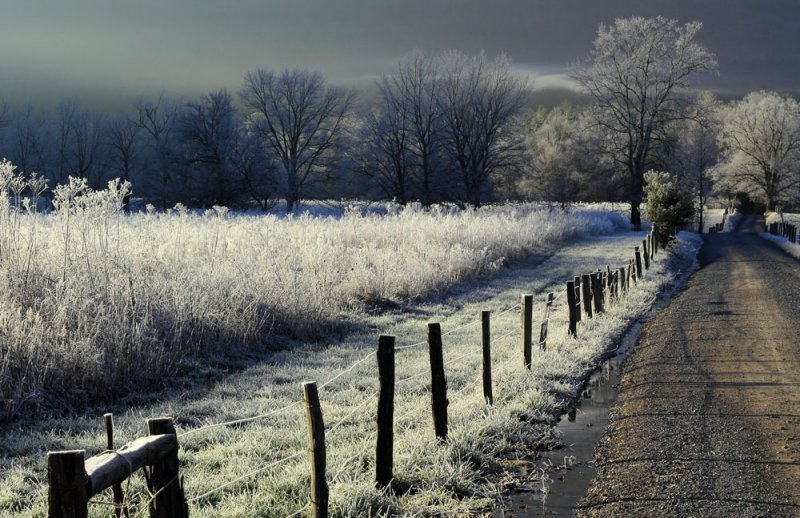 Another Frosty Cades Cove image.