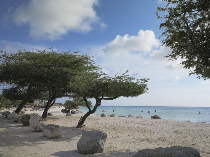 Aruba,not bad either.....