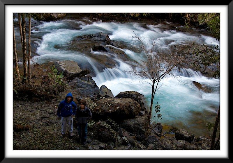 Paseo Parque Nacional Puyehue (Anticura)
