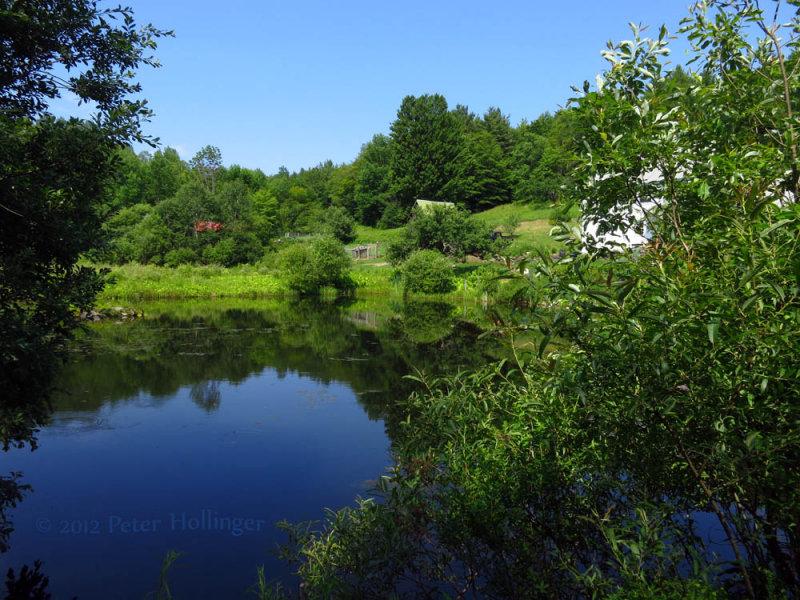 Ecco Pond