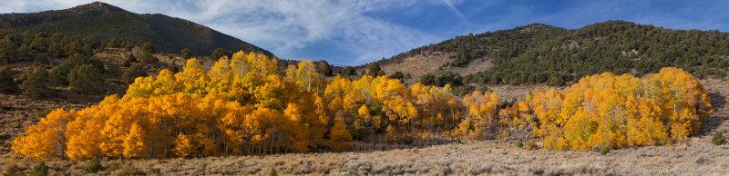 Eastern Sierra Nevada Color