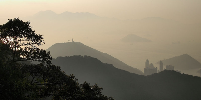 Yellow Mountain - Hong Kong Style