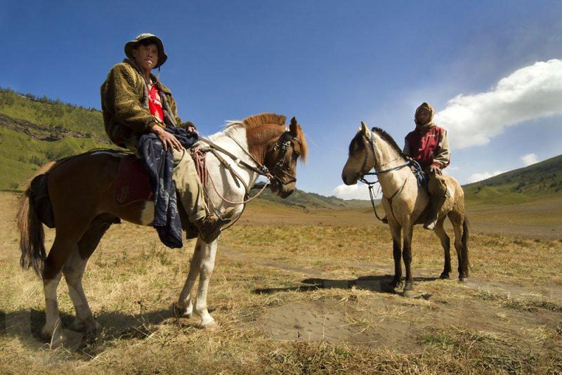 Tengger horsemen at the Savanna