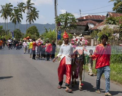 Village procession with the bulls to the racing field
