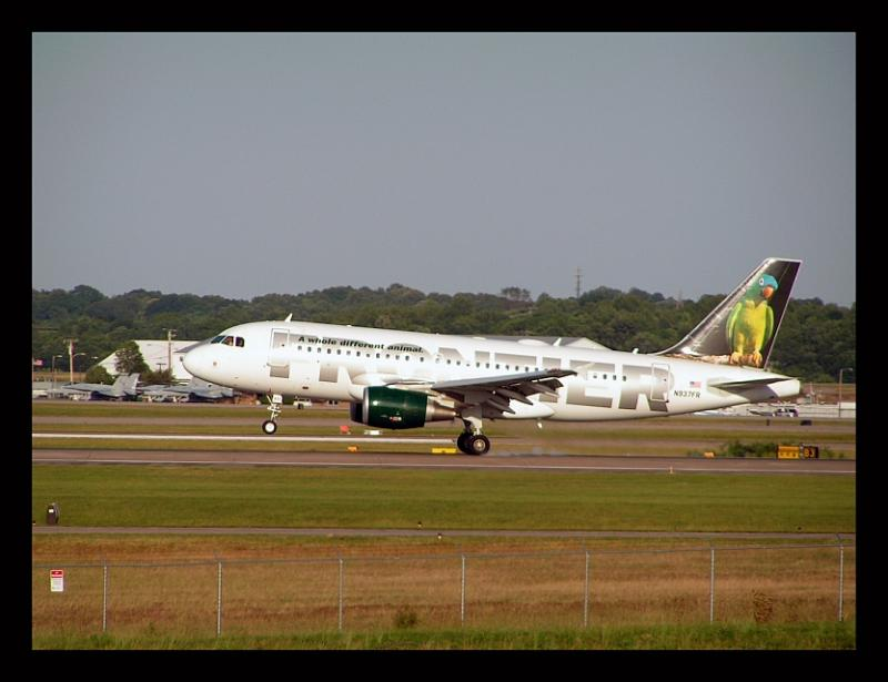 Frontier Airlines  Blue Crowned Conure Airbus