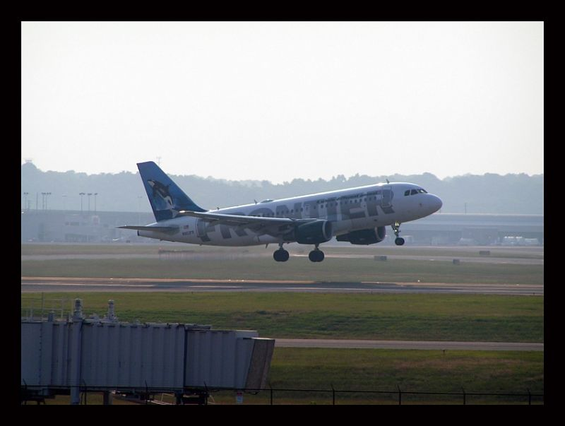 Frontier Airlines Orca