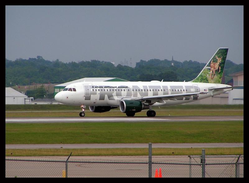Frontier Airlines  Black-Tailed Deer Fawn