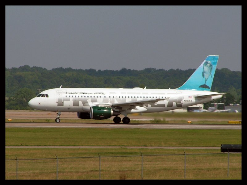Frontier Airlines Dolphin