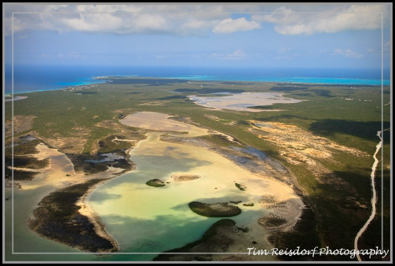 Treeless Island