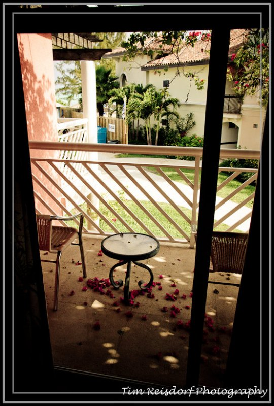 Balcony with Rose Pedals