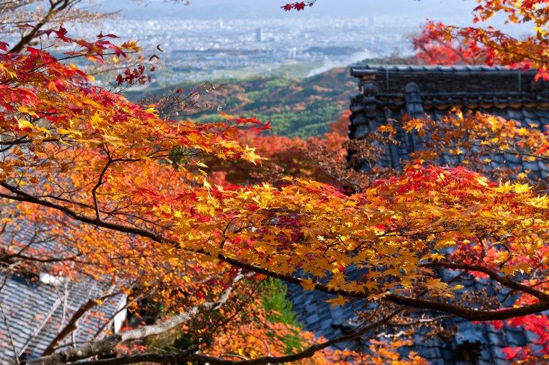 Yoshimine-tera Temple