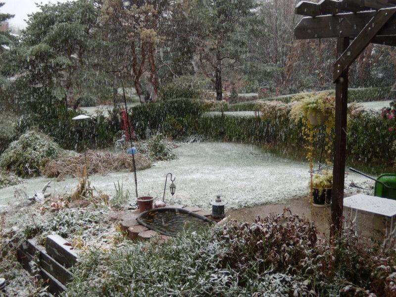 First Snow November 2, 2011