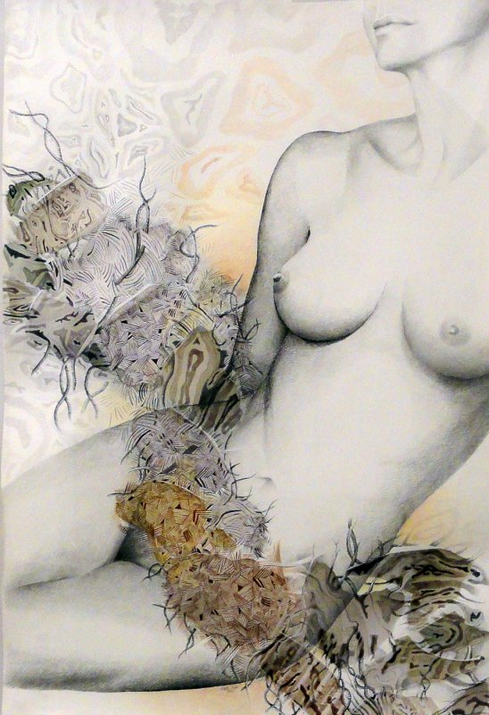 Art by Stella Sidi