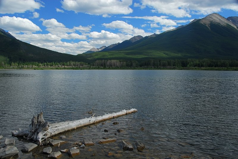 At The Vermilion Lakes