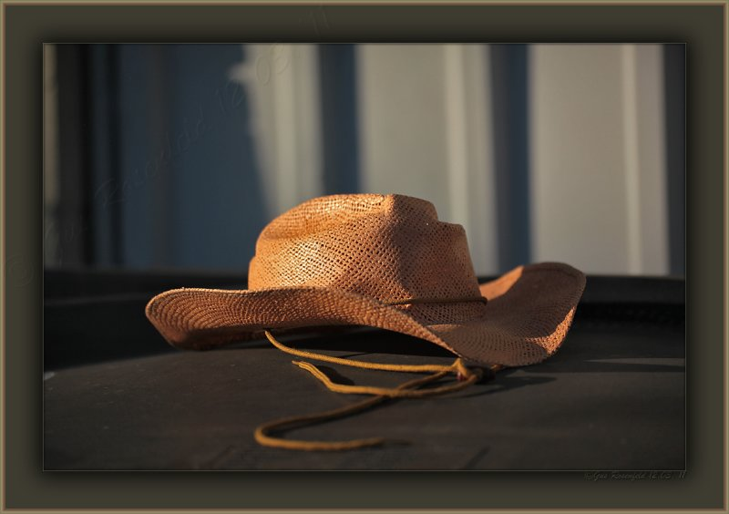 Alley Hat Resting -<br>Evening Light, Loose Collar-<br>Ferrel With Honor